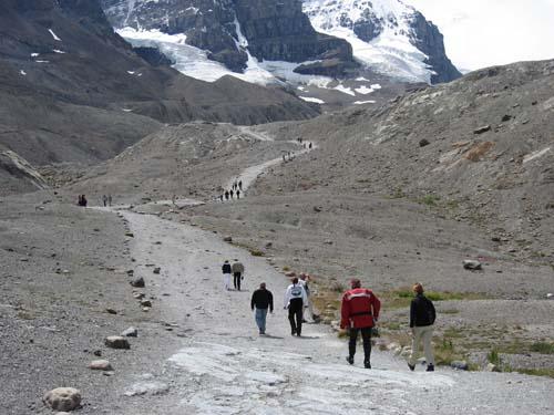 Photos de canada  P94s_jasper_glacier