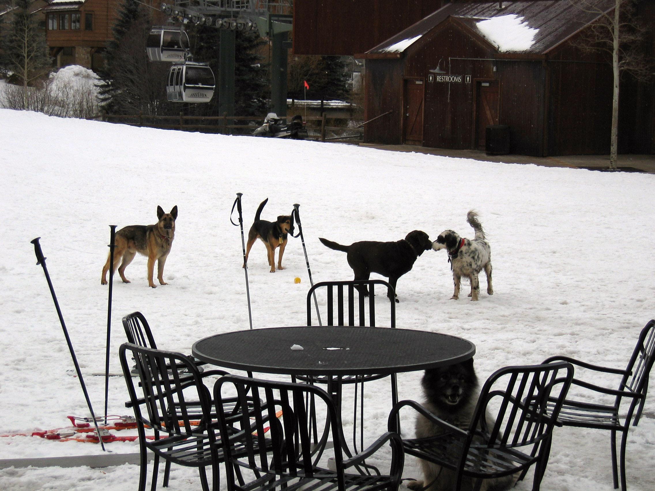 Telluride Ski Trip 2006