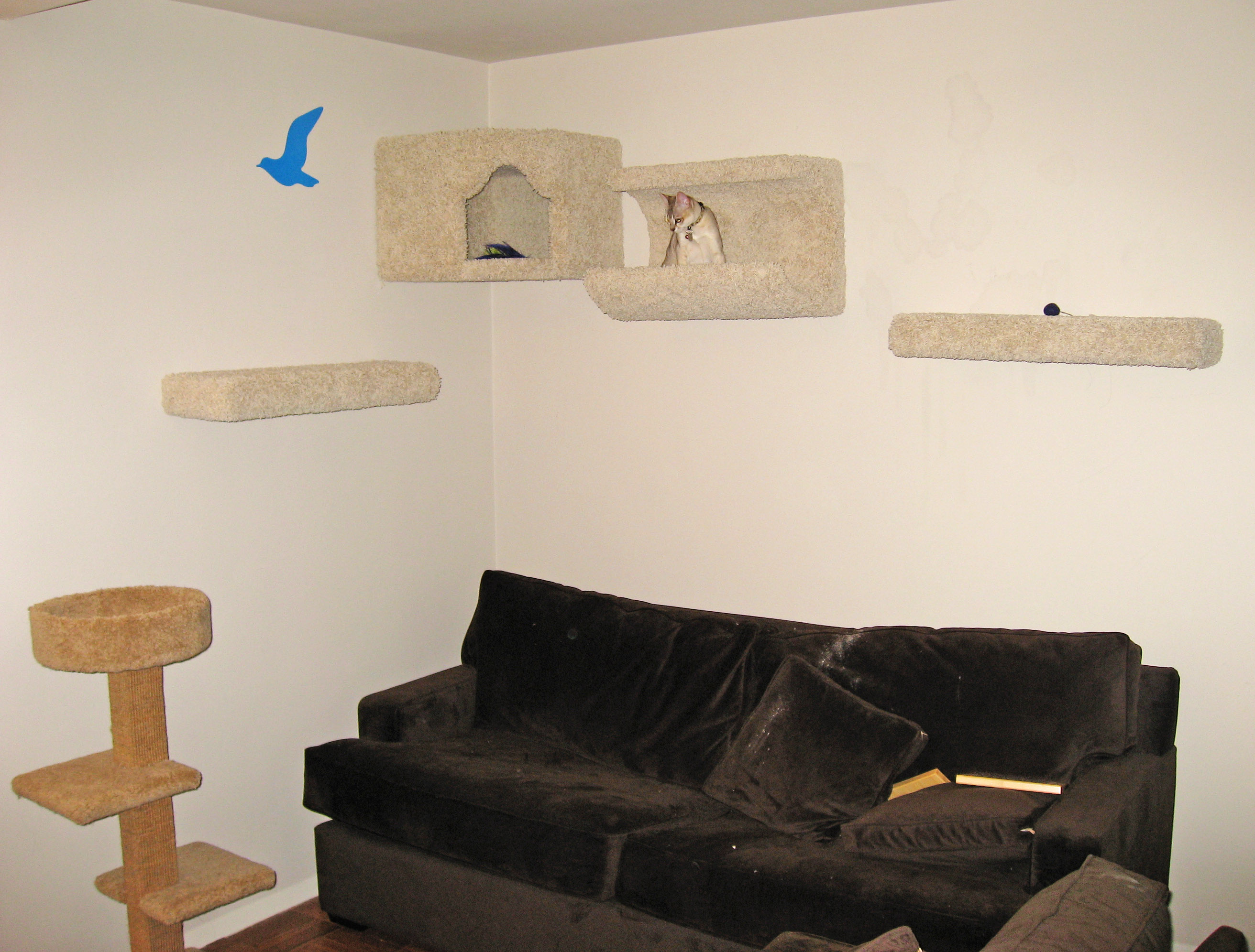 Wall mounted cat furniture related keywords suggestions - Wall mounted cat furniture ...