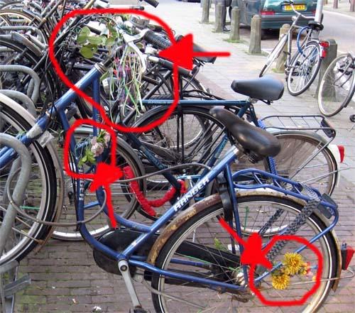 American experience on dutch bikes - MyAmsterdambike.com