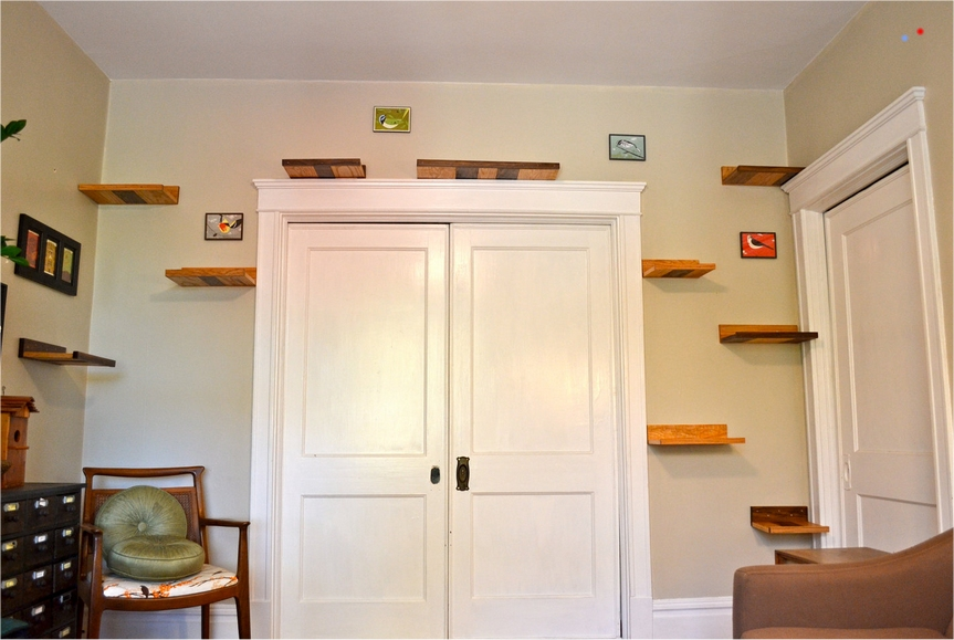 Diy Cat Wall Stairs Clublilobal Com