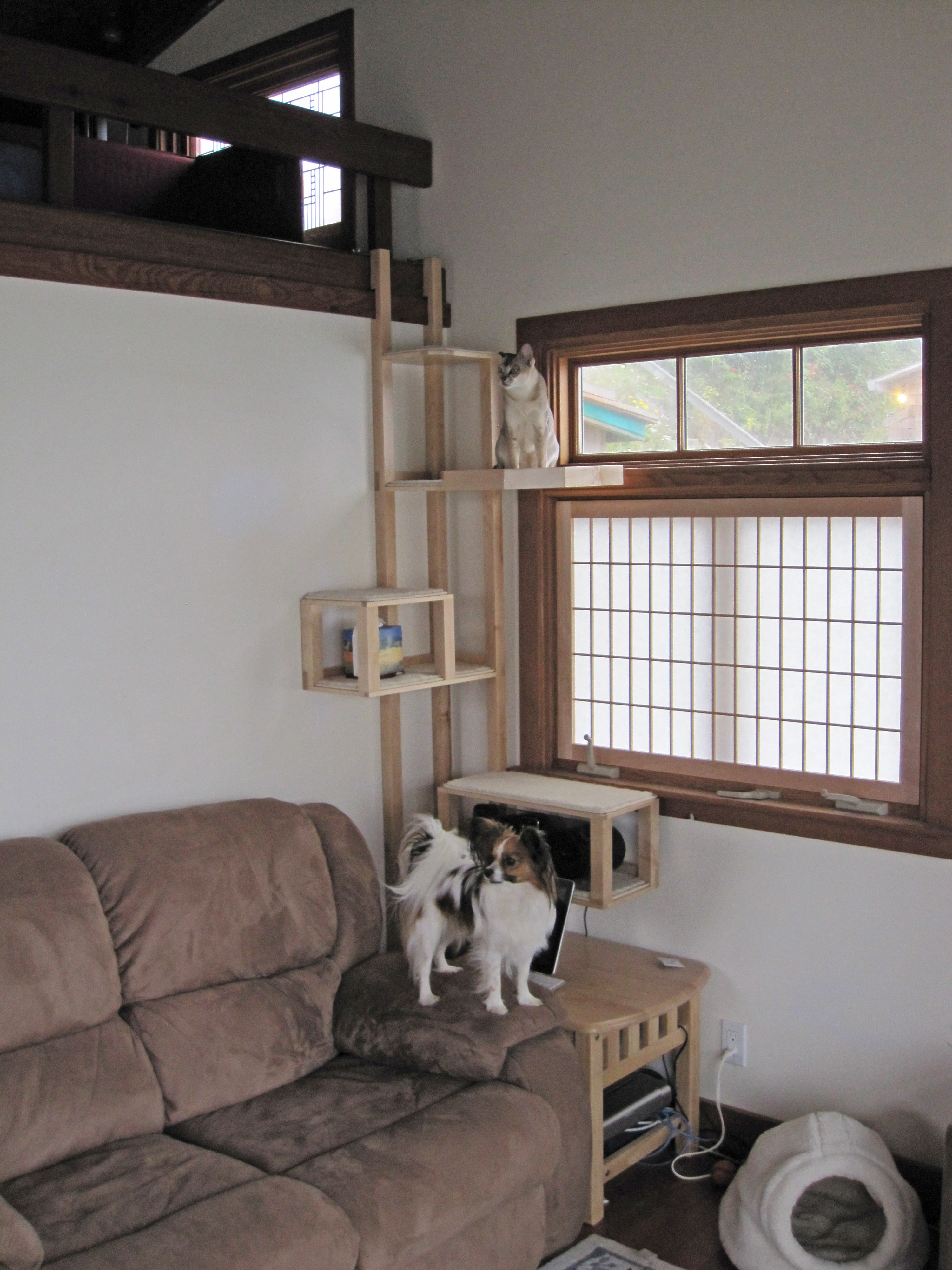 Rick samish custom cabinets in beach cottage for Epic cat tree